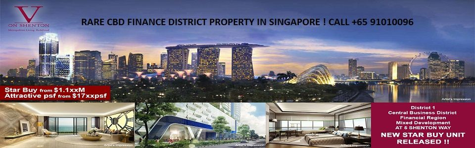 District 01 - V on Shenton - Rare Residences at Singapore Wall Street